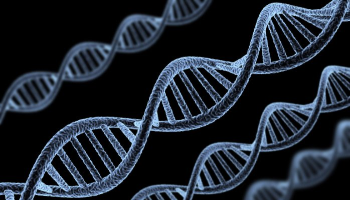 genes-01f8aea